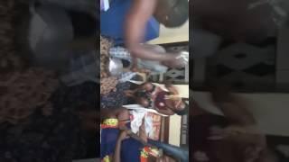 L'Egypte le poivre blanc des lions indomptables du Cameroun de la CAN 2017