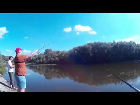 рыбалка на реке десна видео
