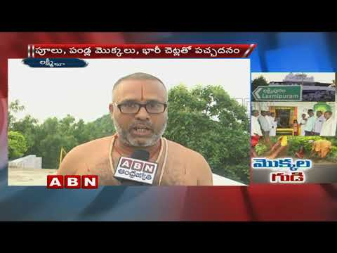 ABN Special Focus on Venkateswara Swamy Temple in Lakshmipur | Green challenge