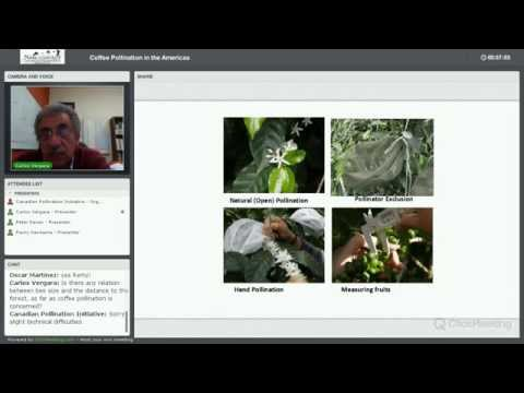 Coffee Pollination in the Americas Webinar - December 4, 2014