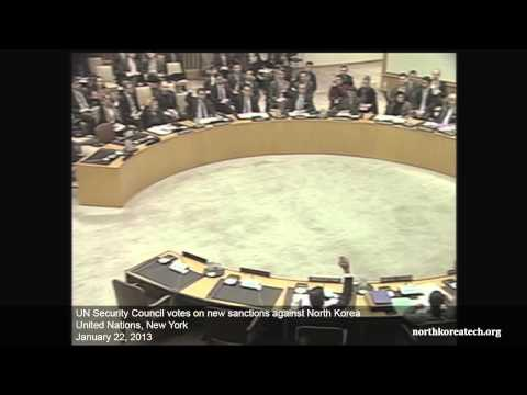UN Security Council vote on North Korea sanctions S/2013/41