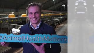 Voices of Animal Health - A livestock farmer's view - Full Interview