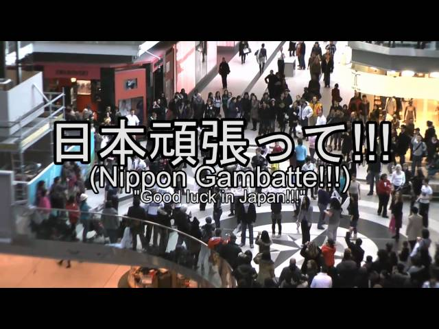 "日本頑張って!!! (Nippon Gambatte!!! ""Good Luck in Japan"") Flash Mob 25/03/11"