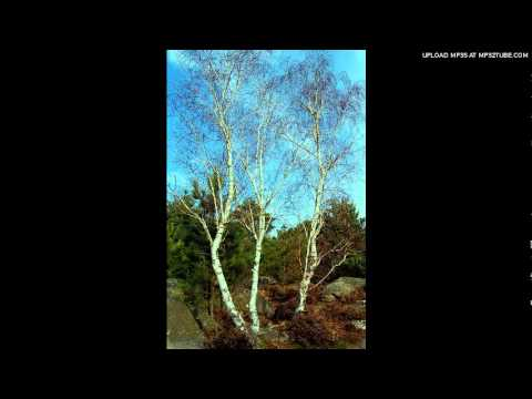 Макаревич Андрей - Снова весна