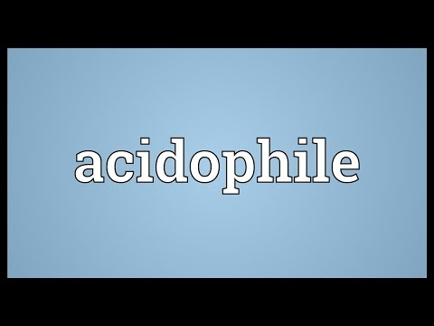 Header of acidophile