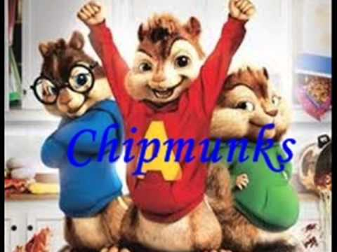 (tomat) Tobat Maksiat - Ickey Roof Chipmunks video