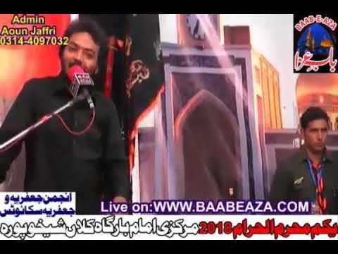 Zakir Ali Abbas Anmber 1st Muharram 2018 Markazi Imam Bargah Kalan Sheikhupura (www.baabeaza.com)