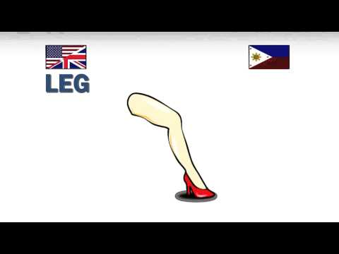 Learn 2 Languages (Tagalog & Bikol)Part 4 WORDS OF ...