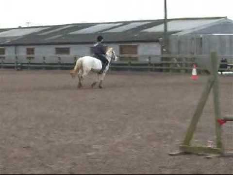 Horse Riding Jumping Lesson