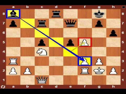 World Chess Championship 2010: Topalov vs. Anand - Game 12
