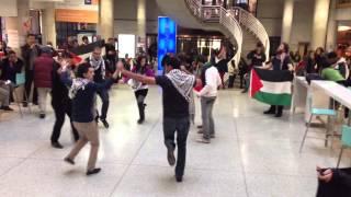 MESA York U & ASA Seneca Dabke Flash Mob