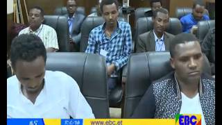 Ethiopian Amharic Evening news dec 25, 2015
