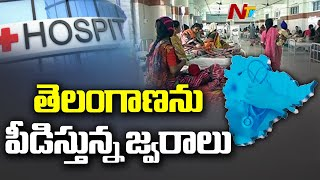 Dengue Fevers On The Rise In Hyderabad | NTV