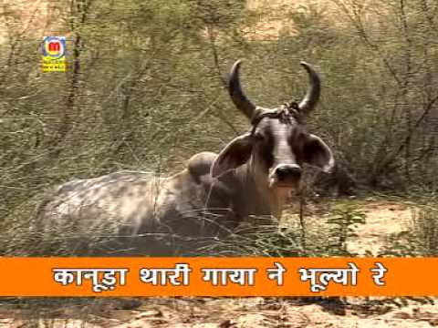 Prakash Mali Bhajan Gau Mata Part 4 video