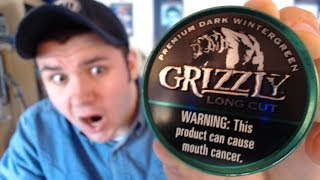 Grizzly Dark Wintergreen Review