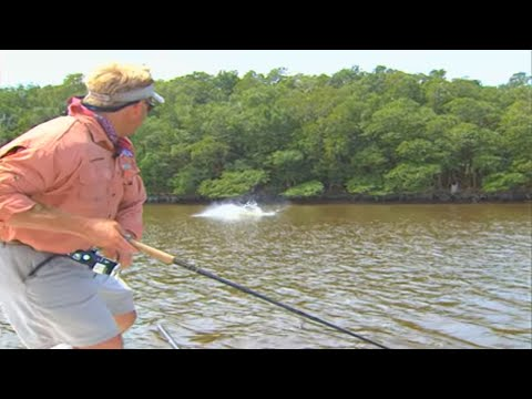 Addictive Fishing: Tarpon Time - MONSTER fish on plugs