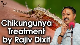 Chikungunya (चिकुनगुनिया) Treatment (tulsi) By Rajiv Dixit | Home Remedy For Chikungunya