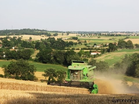 Moisson du blé en coteaux avec une Deutz-Fahr 5665 – Harvest in France with GoPro