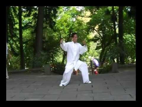 24式太極拳---劉熙銓