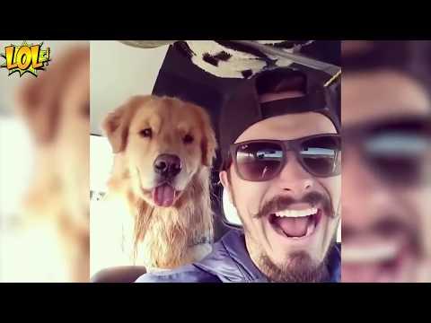 ЛУЧШИЕ СМЕШНЫЕ УГАРНЫЕ ПРИКОЛЫ СЕНТЯБРЬ 2017 BEST Jokes 2017 Funny Videos Fail #70
