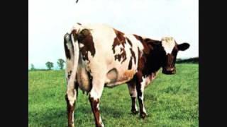 Pink Floyd Video - Pink Floyd - Fat Old Sun - [HQ]