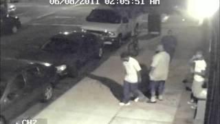 Ladrones derriban un árbol para robar bicicleta