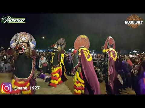 Rogo Samboyo Putro Live Jong Biru Kediri (Tawuran)