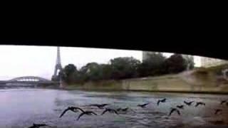 Winged Migration trailer