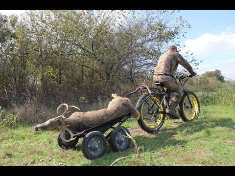 Electric Fat Tire Bikes for Hunting