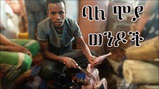 ወንዶች ዶሮ ሲገነጥሉ ተመልከቱ  -   ምን አስተያየት አላችሁ? Addis Ababa
