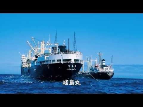 日本水産(株) 会社紹介「ニッスイの100年」