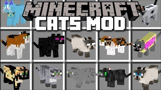 Minecraft CAT MOD / BREED AND SPAWN UGLY LOOKING CATS!! Minecraft