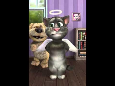 La Morte Di Tom Il Gatto Innamorato