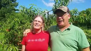 WWOOF USA - Vegetable farm in Northwest Connecticut