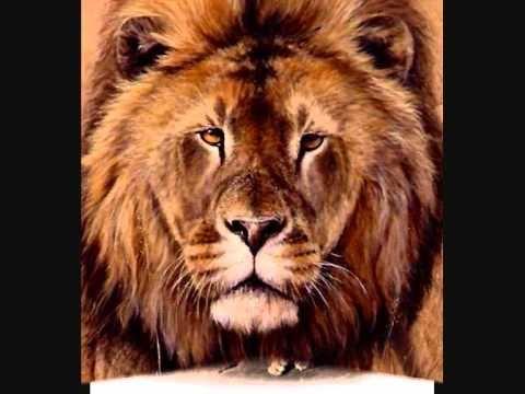 Helmut Lotti - The Lion Sleeps Tonight