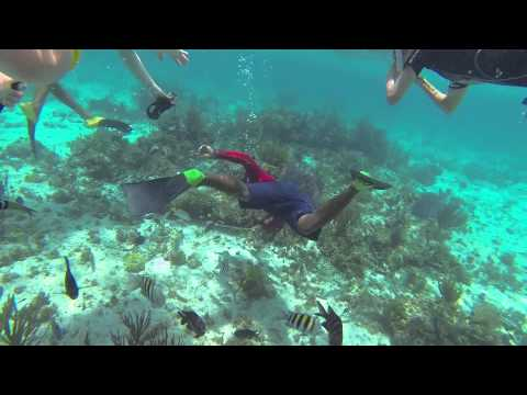 Gopro Hd  Grand Cayman Snorkeling With Red Sail Sports