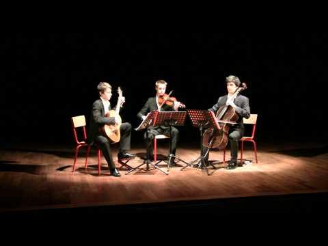 Concert salle allegora Auterive trio De Fossa 1 mov.MTS