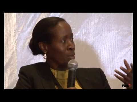 CBO Capital  3rd Annual Investors Conference: Pre-Election Investment Strategies in Nigeria  2014'