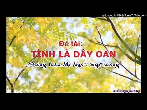 28 - TÌNH Là Dây Oan - radio.lite
