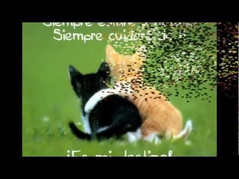 Quiero Decirte Esta Vez, Yo De Ti Me Enamore video