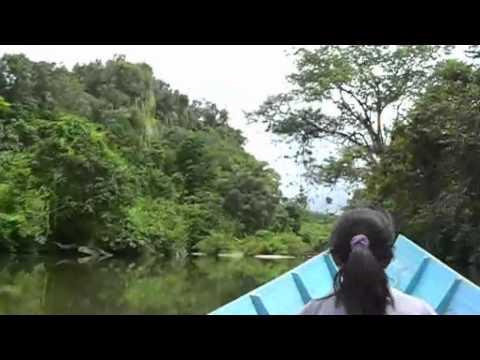 Kelingai Iban Tattoo Documentary
