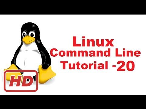 [Linux Command Line Tutorial] Linux Command Line Tutorial For Beginners 20 - Introduction to Bash S