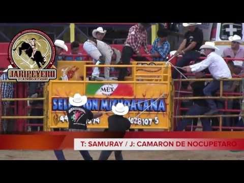 ¡¡25 MONSTRUOS!! De Seleccion Michoacana En El Relicario De Morelia 2013