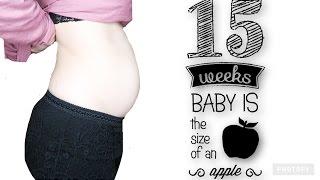 15 WEEK PREGNANCY UPDATE & BELLY SHOT!
