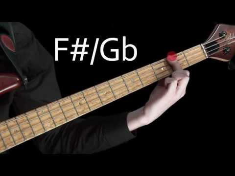 Lesson Bass - Learn To Play Bass Lesson 6