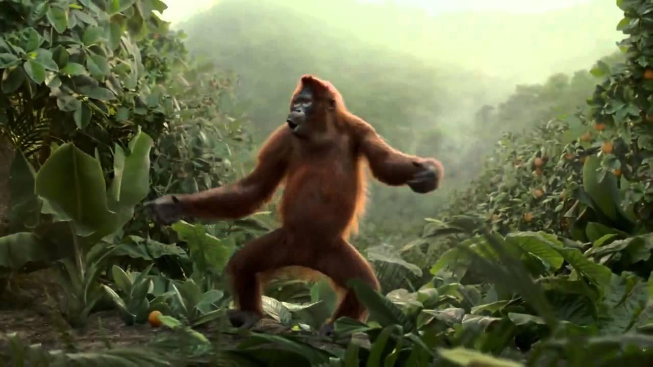 Orangutan Cartoon Funny Orangutan Has Best Dance