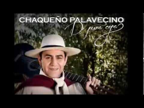 LA VECINITA - CHAQUEÑO PALAVECINO - DE PURA CEPA - 2013