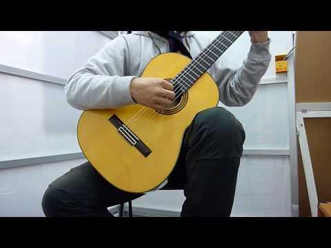 クラシックギターソロ Reflections(Andrew York 作曲)