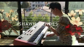 Download Lagu Shawn Mendes - In My Blood - Tony Ann Piano Cover Gratis STAFABAND