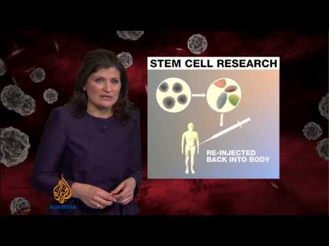 Japan scientists claim stem cell breakthrough